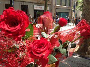 Roses de Sant Jordi- Mataró parade