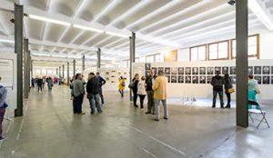 festimatge- exposicions 2018