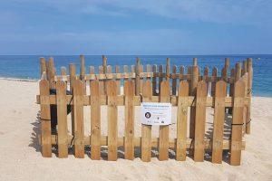 niu tortugues platja Mataró