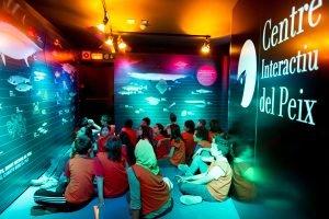 Centre interactiu eix Mercaba