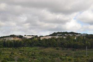 Es reinicia el servei de neteja de les àrees verdes del cementiri de Sant Pere de Badalona