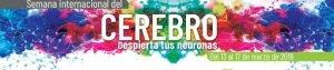 De l'13 a l'18 d'octubre: Setmana de l'Cervell 2020