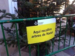 Mataró habilita 32 punts de recollida d'arbres de Nadal