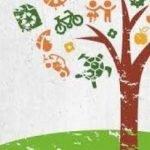 Es reprenen les activitats de les jugateques ambientals a Montgat!