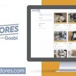 """Gosbi crea """"LosAdoptadores.com"""" per facilitar l'adopció de gossos i gats"""
