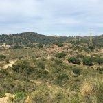 L'Ajuntament de Badalona recupera el domini públic del camí de Can Mas
