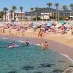 El Ple municipal de Mataró aprova una modificació normativa per fer possible la platja per a ciutadania amb gossos