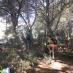 Jornada de voluntariat per netejar el bosc a Sant Vicenç de Montalt