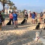 Mataró habilita 1.000 m² de la platja de Ponent per als gossos