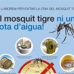 L'Ajuntament de Teià demana col•laboració ciutadana per controlar el mosquit tigre