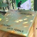 Nova menjadora de pinso per a gats a la zona del pavelló Torrent d'en Terra d'Arenys de Munt