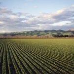 Jornada 'Atmosterra' - adaptació sistema alimentari a crisis climàtica i energètica